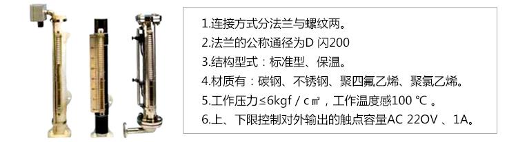 DXYJ型水位标尺-技术参数.jpg